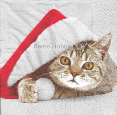Dekorszalvéta - Santa Cat