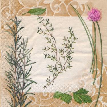 Dekorszalvéta - Fűszernövények 4