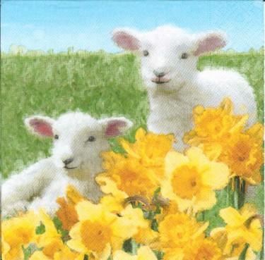 Dekorszalvéta - Cute Lambs