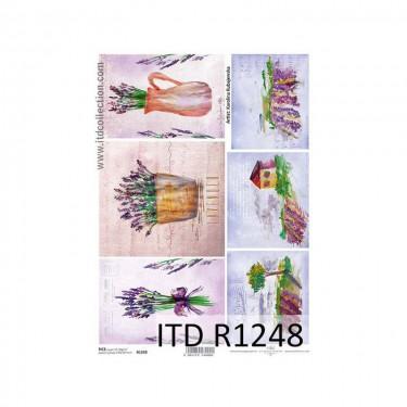 Rizspapír - ITD R1248