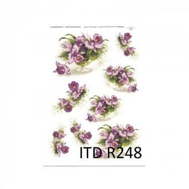 Rizspapír - ITD R248