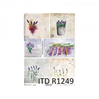 Rizspapír - ITD R1249