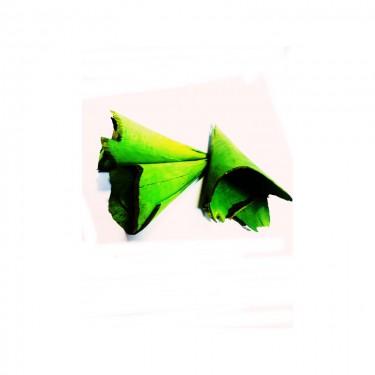Terméskúp zöld 3 db/cs