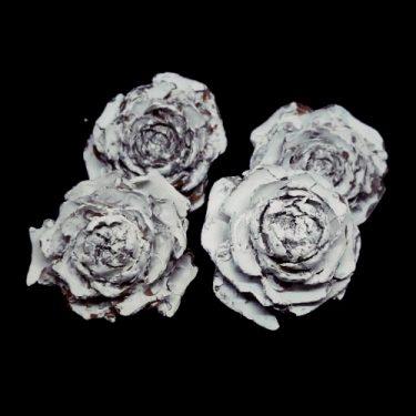 Termés Rózsafej fehér 4 db/cs
