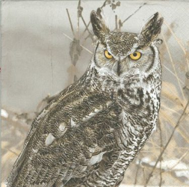 Dekorszalvéta - Winter Owl