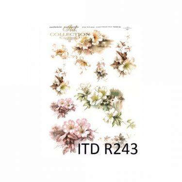 Rizspapír R 243