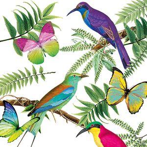 Dekorszalvéta - Tropical Birds