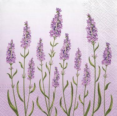 Dekorszalvéta - Lavender Field Lilac