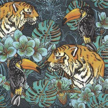 Dekorszalvéta - Wild Nature