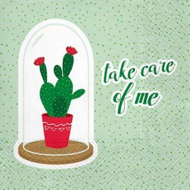 Dekorszalvéta - Take Care of Me