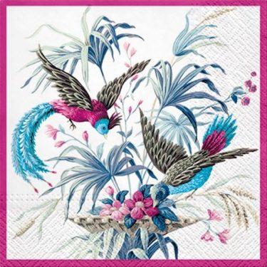 Dekorszalvéta - Birds of Eden