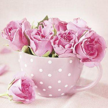 Dekorszalvéta - TaT Roses in a Cup