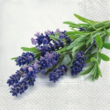 Dekorszalvéta - Lavender Bunch
