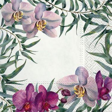 Dekorszalvéta - Elegant Orchid